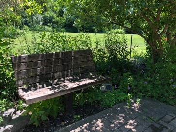 seat trees