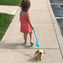 dog 2019 cumbee aubrey walking dog 1 (2)