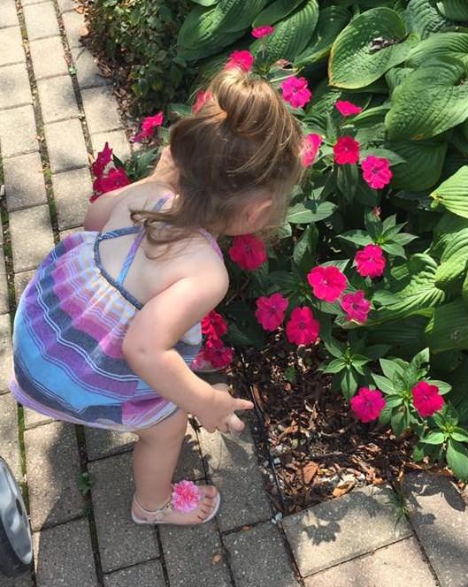 flowers ayva smelling flowers
