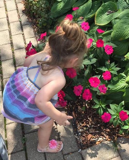 USE ayva smelling flowers
