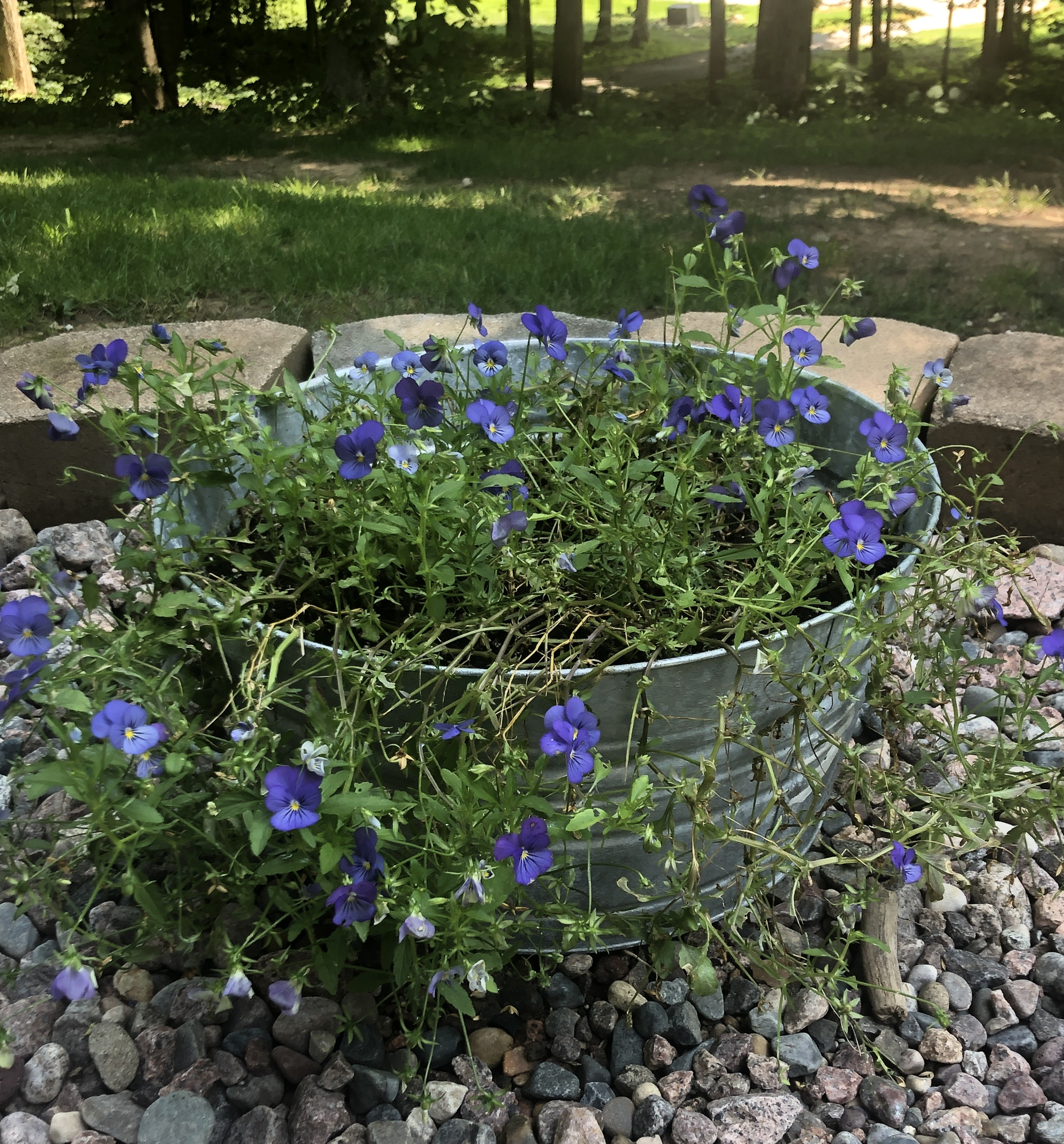 USE - flowers