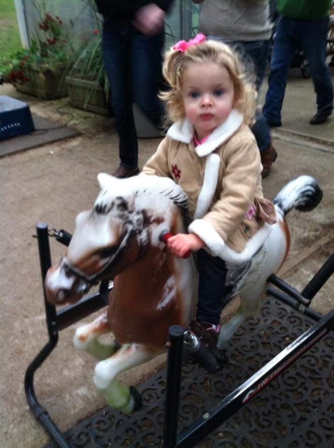cova riding horsey