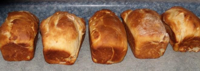 Day 15 Bread