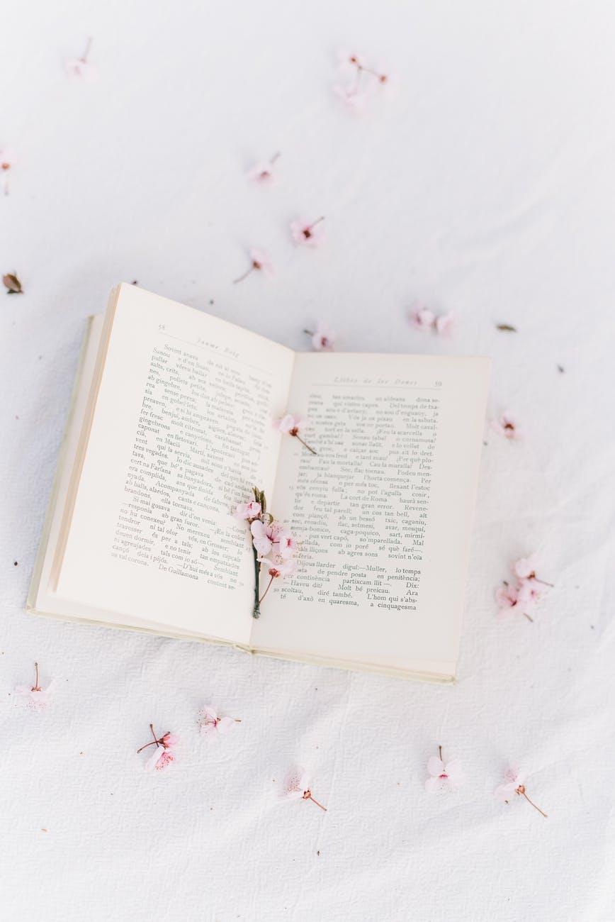 high angle shot of an open book